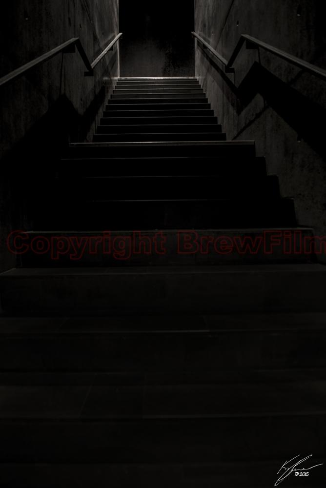 Harpa stairs