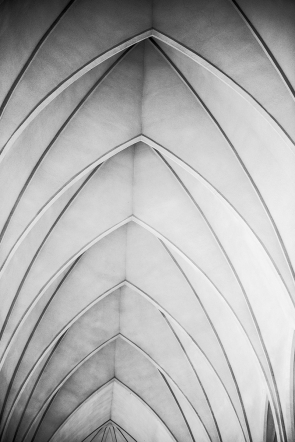 Vaulted ceiling (Black & White)